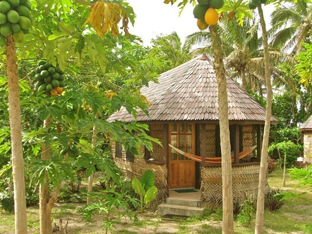 Image for: Heilala Holiday Lodge