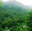 Thumbnail for: Serenity Lodges Dominica