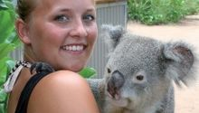 Image For: Bungalow Bay Koala Village