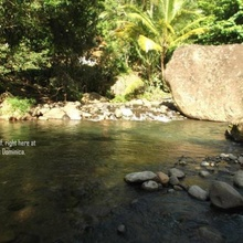 Image for: Serenity Lodges Dominica